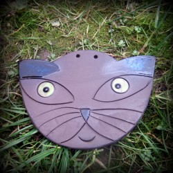 Obrázek kočka
