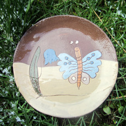 Talířek motýl